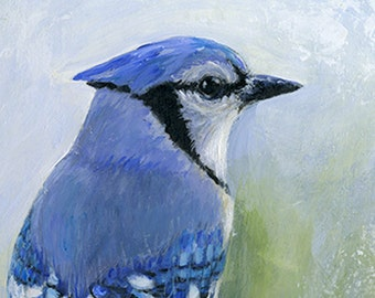 BlueJay art print, reproduction, acrylic painting decor, bird art, bird lover, matted print, gift, wall art,contemporary art by Diane Ackers