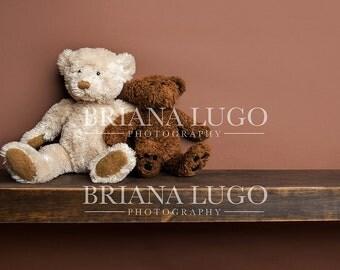 Digital newborn  bear shelf prop