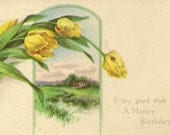 Vintage Birthday Postcard Yellow Tulips and Countryside Cottage 1909 Gibson Art Co Antique Postcard