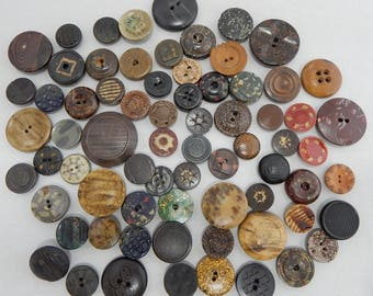 70 Composition-Hard Rubber-Vegetable Ivory Antique Buttons Lot