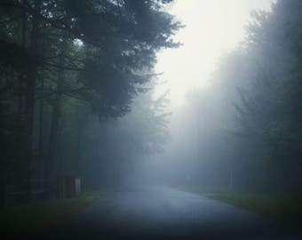 The Misty Road - 8x10 Fine Art Photograph