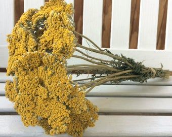 SALE Dried Flower bunch yellow YARROW FLOWERS Natural Fragrant Gold Yarrow Bouquet Flowers Wedding Country Shabby Shower Floral Supplies