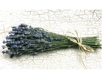 Sale DRIED ENGLISH LAVENDER Flower Bunch Dried bouquet lavender bouquet Fragrant Lavender Flower Bouquet Wedding Flowers Shabby cottage Prim