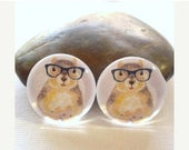 Moving 50off Sale - 25mm /20mm/12mm Squirrel Handmade Photo Glass Cabochons PC258-25/20/12