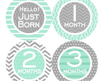 1st Year Baby Month Stickers, PLUS Just Born Sticker, Baby Boy Bodysuit Monthly Stickers, Milestone Stickers, Chevron Mint Grey 072B