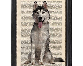 Print on a Vintage Dictionary Page - Husky dog