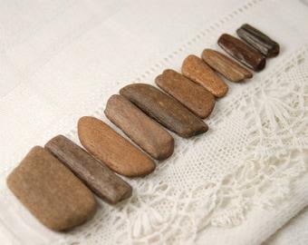 """10 ancient fossil bone sticks (.75"""" - 1.25"""") (no.b5)"""