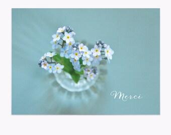 Postcard • MERCI • Myosotis • Forget me not