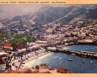 Santa Catalina Island, California, Avalon Town - Vintage Postcard - Postcard - Unused (TTT)