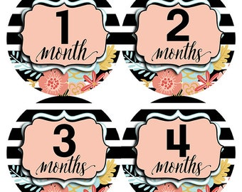 FREE GIFT, Floral Month Stickers Girl, Black White Month Stickers, Floral Monthly Baby Stickers, Flowers, Pink, Stripes, Baby Shower Gift