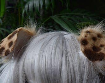blonde puppy ears with brown spots