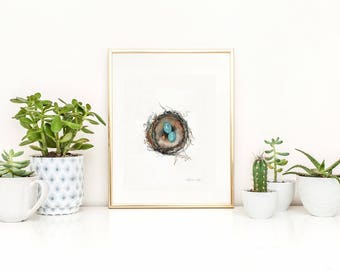 Nest Print, Bird Art, Robins Nest Print,  Robin eggs, blue, Watercolor Print, Mother's Day Gift, Home Decor