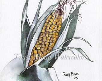 Corn on the Cob Vegetables  Gardening farmers market Tracymoadwatercolors