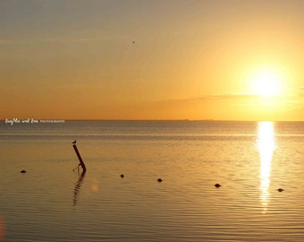 Soft Yellow Sunset Beach Photo, Gold Beach Photography, Ocean Sea Travel Art, Tropical Coastal House Decor, Nautical Home Decor Wall Art