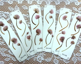 PRESSED FLOWER BOOKMARKS -  Real Chives, Choose One or More Handmade Bookmarks, Book Lover, Gardener, Nature Lover Gift