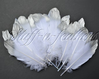 Bulk / Wholesale SILVER dipped white feathers - metallic silver tip feathers real painted goose palletes  / 5-8 in (12.5-20 cm) long / F202S