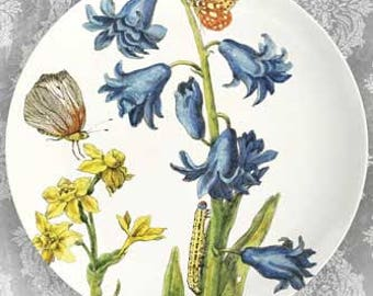 bluebells melamine plate