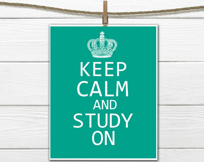Keep Calm and Study On - any size - Printable PDF