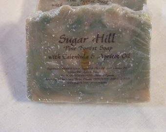 Sugar Hill Pine Forest Calendula