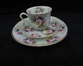Rose Luncheon Set: Hand decorated porcelain