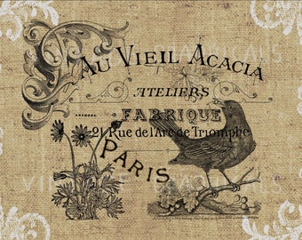 French decor Bird Flower Instant graphic digital clip art image for Craft Paper iron on transfer Burlap Decoupage Pillow Card Tote No. gt346