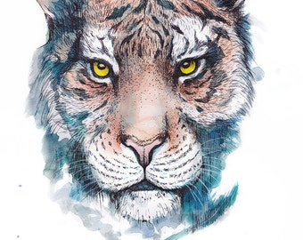 Print -Watercolour Tiger print - Giclee art print of ink and watercolour tiger illustration