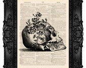 Skull with Flowers (side view) - ORIGINAL ARTWORK - Dictionary Art Print Vintage Upcycled Antique Book Page no.166