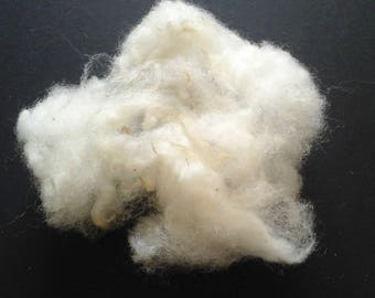 WASHED SUFFOLK fibre british down breed
