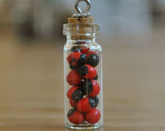 Lucky Seeds in a Bottle