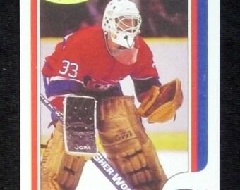 1986/87 O-Pee-Chee Hockey #53 Patrick Roy [Montreal Canadiens] (RC) RP