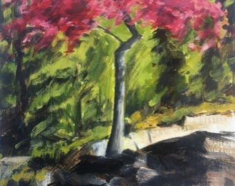 2017 SPRING STUDIO SALE : 8x10 Oil Painting of  Japanese Maple