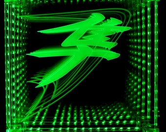 Hayabusa Infinity Mirror for You or Your Busa Fanatic!