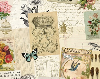 AUTHENTIQUE Harmony Collection, 12 X 12 Designer Paper, Nature/Flora and Fauna Theme Scrapbook and Papercraft