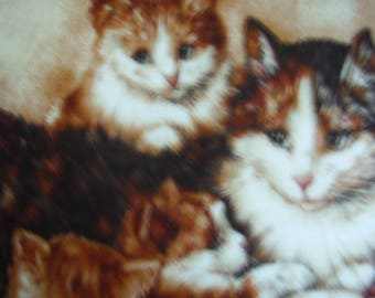 Pretty cushion with 3 lovely cats (kittens)
