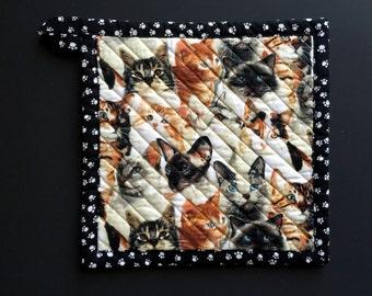 Crazy Cat Lady potholder, cat potholder, cat trivet, gift for cat lover, siamese cat, tabby cat, maine coon, orange tabby, fluffy cat,