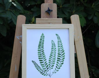 Fern No. 3  Framed Print