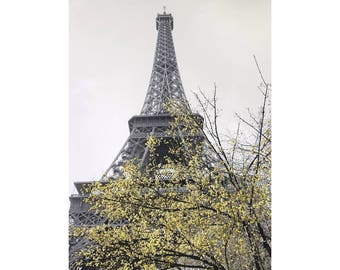 Eiffel Tower in Paris France - Black and White Photo Print Art