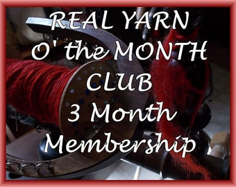 YARN of the MONTH Club...A New Handspun Yarn Treasure Each month... for 3 months, FREE  Shipping!