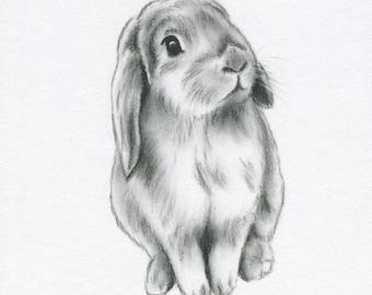 "Bunny Art, ORIGINAL 5""x7"" Lop Eared Bunny Charcoal Drawing, Bunny Sketch, Nursery Art, Rabbit Art, Rabbit Sketch, Bunny drawing"