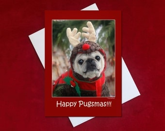 Funny Christmas Card - Pug Christmas Card - 5x7 - Happy Pugsmas