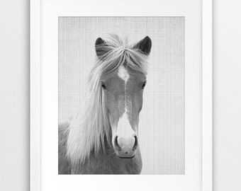 Horse Print, Black And White Horse Photography, Wild Horse Print, Icelandic Horse, Wilderness Wall Art, Equestrian, Modern, Printable Art