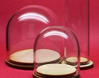 39mm Glass display dome with wood base