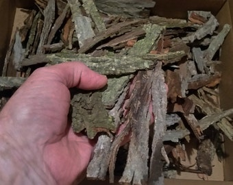 1 Lb. Shagbark Hickory Bark SCRAPS Meat Smoking Barbecue BBQ Grilling Syrup Crafting Fairy Gardens Terrariums Wood Working - Carya ovata