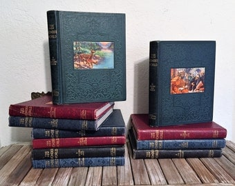 Vintage Set Of Eleven Books Titled The New Wonder World