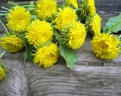 A bouquet of yellow dandelions handmade. Made to order. Interior bouquet in rustic style. Spring flower handmade