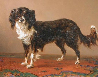 Charming Portrait of a Dog in an Interior