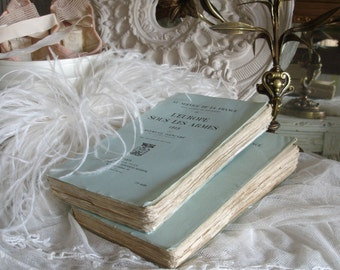 Old French books - dreamy