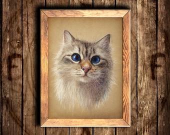 Picture of fluffy cat\Neva Masquerade portrait\pastel pencil original painting\blue eyes kitten\toned beige paper\pet art\beautiful cute cat