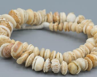 133 Old Shell Trade Beads from Mauritania