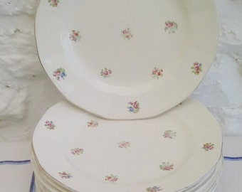 Vintage French breakfast plates by Digoin Sarreguemines.
